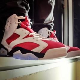 Air-Jordan-6-Carmine-2014-Shoulee81